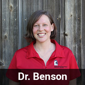 Dr.-Lindsay-Benson